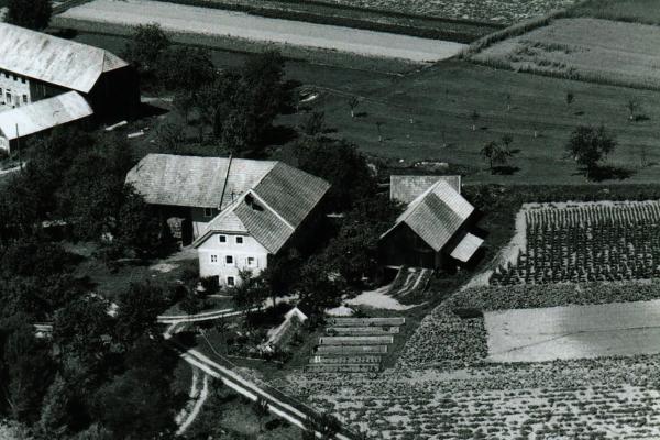 Hof-1960